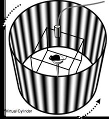 How OptoMotry works | CerebralMechanics Inc